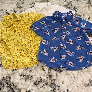 3T Button Down Shirt Bundle